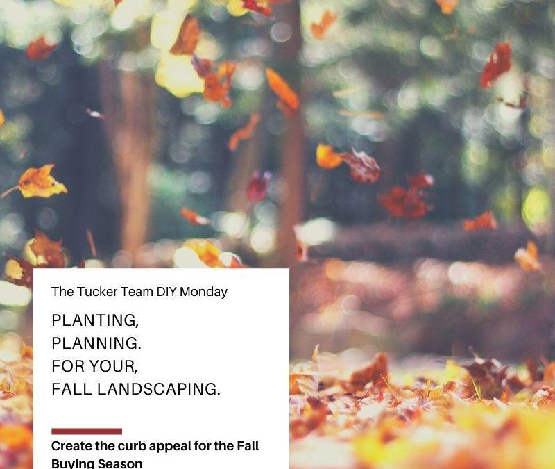 Prep for Fall Landscaping